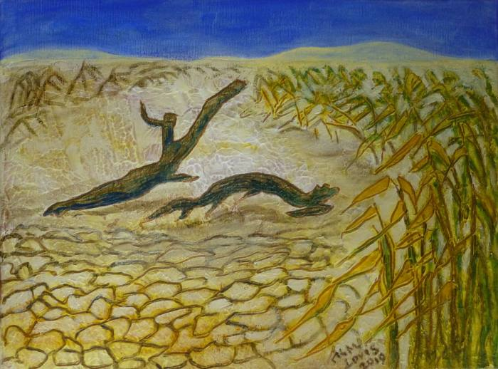 Erde-Wüste